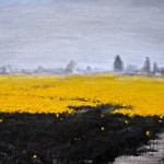 Yellow Field With Path